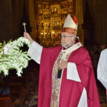 Domingo de Ramos. Catedral de Oviedo