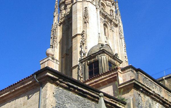 Actividades en la Catedral
