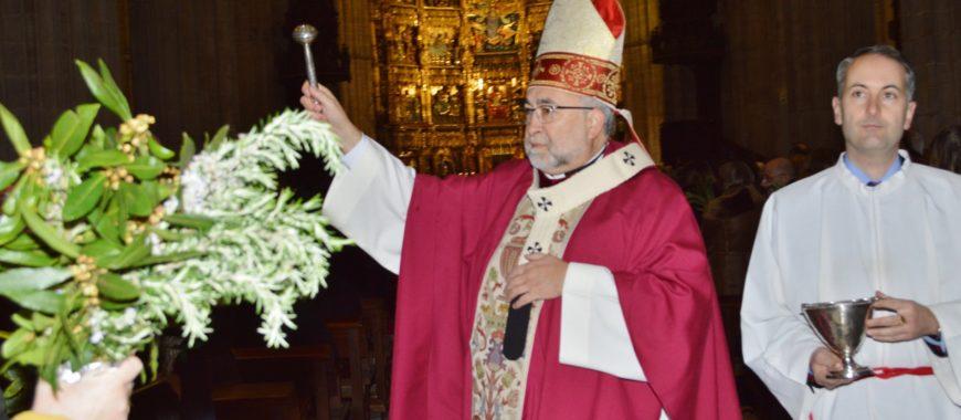 """""""Vivamos con fe y asombro lo que en estos días santos se nos quiere de nuevo relatar"""", Domingo de Ramos en la Catedral"""